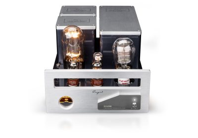 Cayin CS-845M Monoblock Endstufe Endverstärker